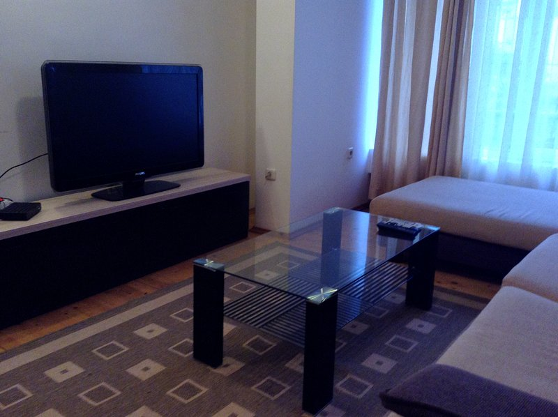 Spacious central apartment, holiday rental in Dedovo