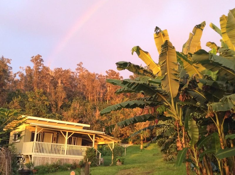 Eco-Cottage on Organic Farm, holiday rental in Honaunau