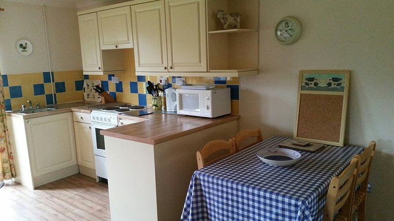 Well-equipped kitchen with fridge, microwave and electric cooker