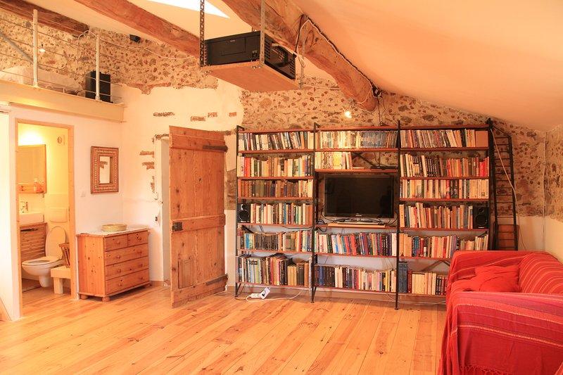 TV de tela plana, DVD player, Biblioteca