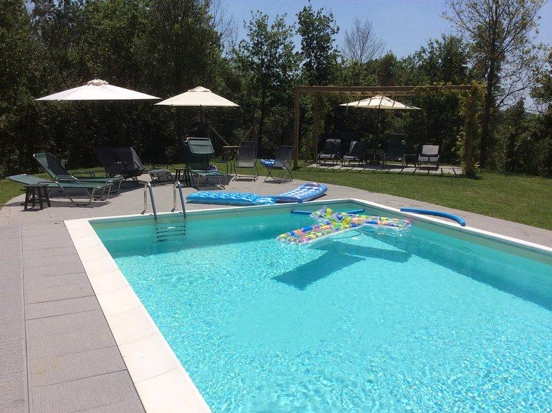 Tal van ligbedden, ligstoelen en parasols bij het zwembad