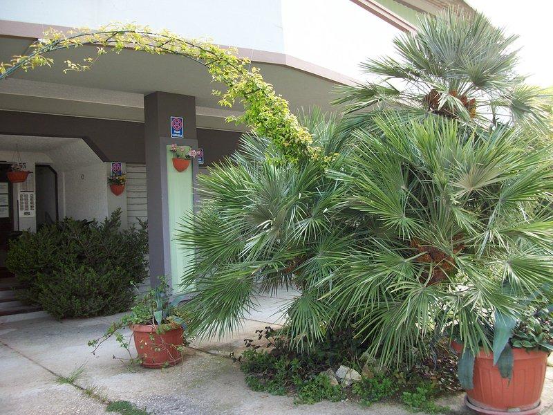Appartamento bilocale 3 posti letto - App.Primula, vacation rental in Fonte Umano-San Martino Alta