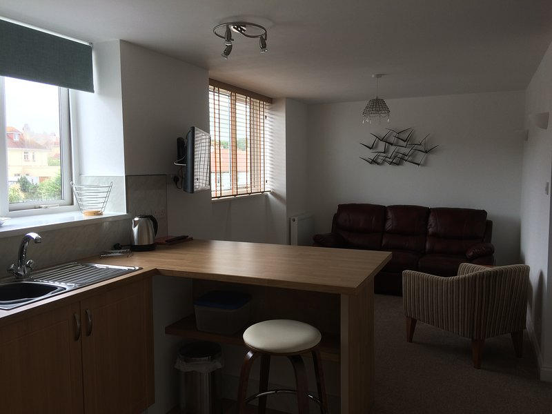 Stanley House Holiday Apartment Two, holiday rental in Paignton