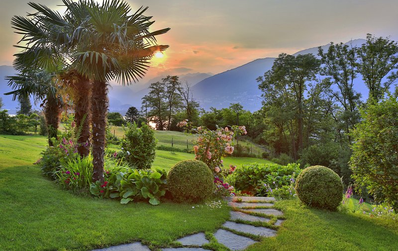 Beautiful garden with a view of the lake