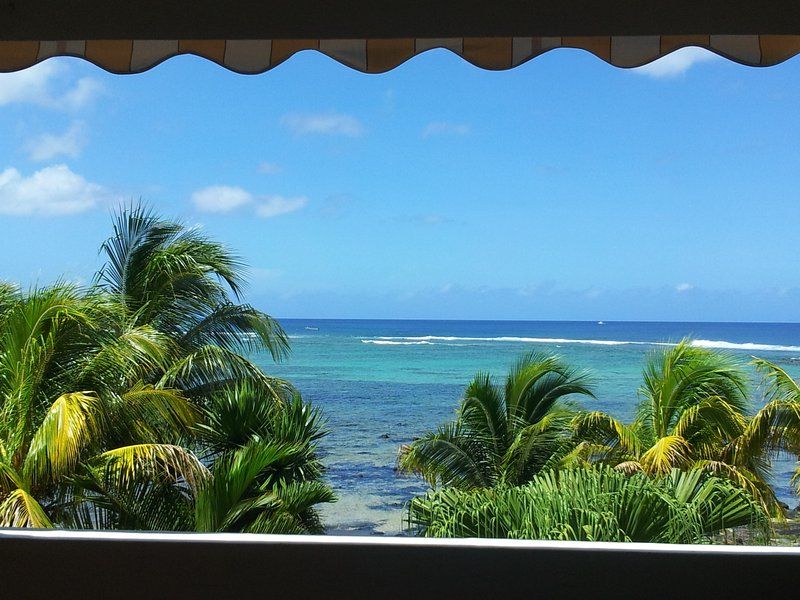 Luxury Apartment on the beach., alquiler vacacional en Petite Riviere