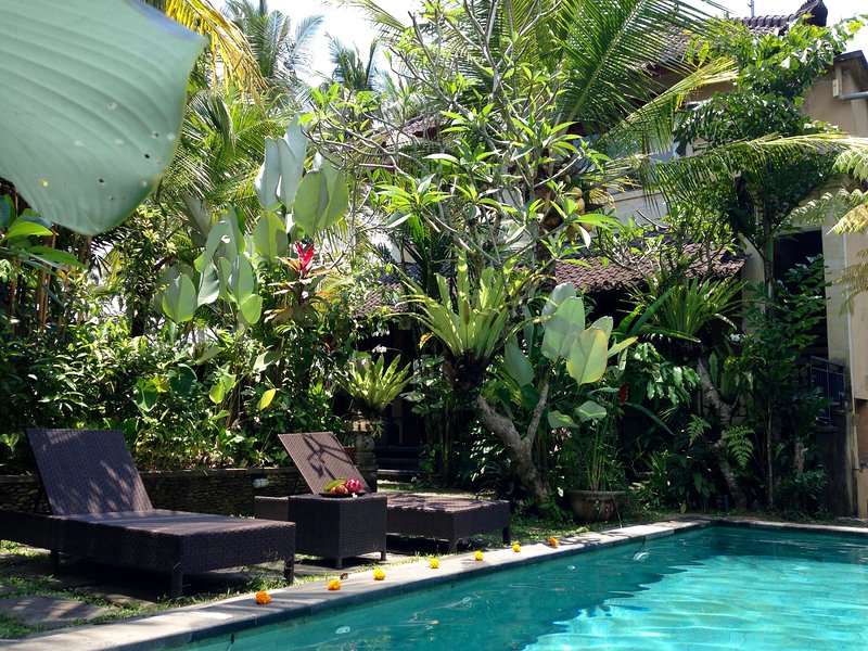 Pool, nestled in tropical garden