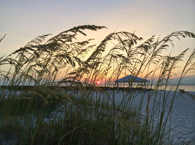 Sound, beach, sunset