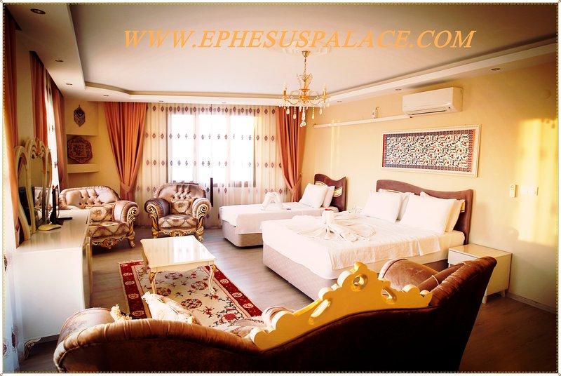 this room has kitchen plus big balcony panoramic Selçuk view