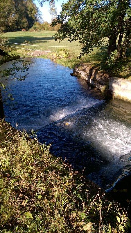 Il fiume restituisce vicina