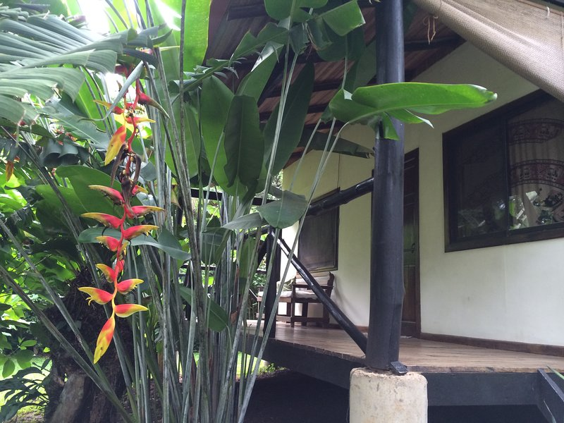 Las Luces Cabina 1, vacation rental in Montezuma