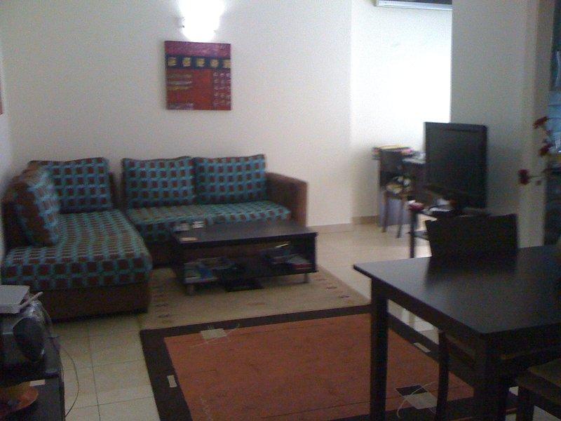 Habitación de buen tamaño de estar y comedor. Hay una terraza a la derecha. El nuevo sofá es todo bleue.