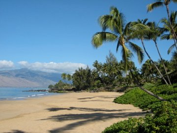 This Beach is 50 paces from your lanai!