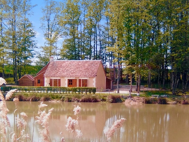 Amazing house with shared pool, vacation rental in Faverolles