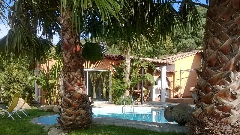 Spacious house with swimming-pool, vacation rental in Sollacaro