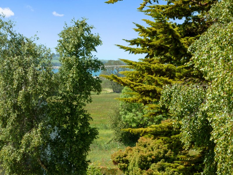 Spacious house with sea view, vacation rental in Saint-Jean-du-Doigt