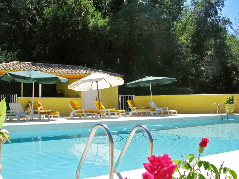 Amazing mansion with shared pool, holiday rental in Lignan-sur-Orb