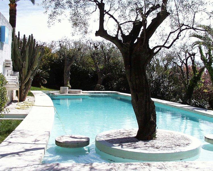 Πισίνα και κήπο