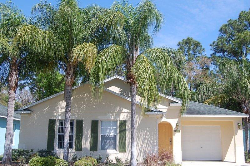 Building,Cottage,Palm Tree,Tree,Dog House