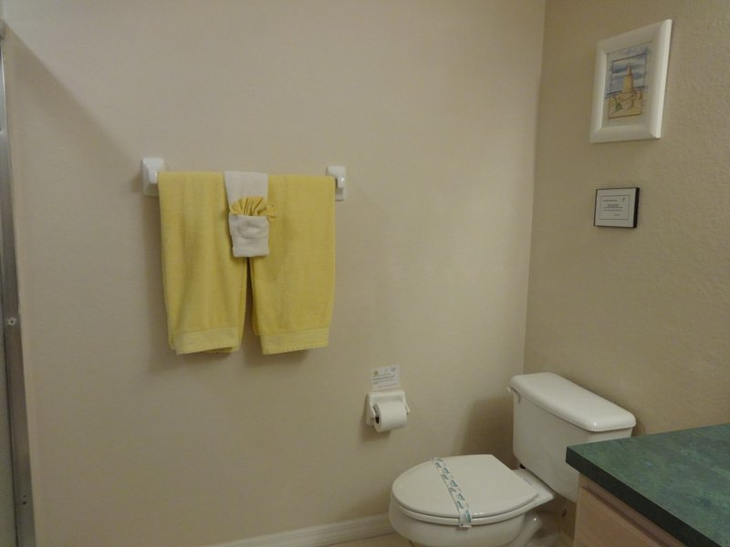 Toilet,Blanket,Towel,Indoors,Room