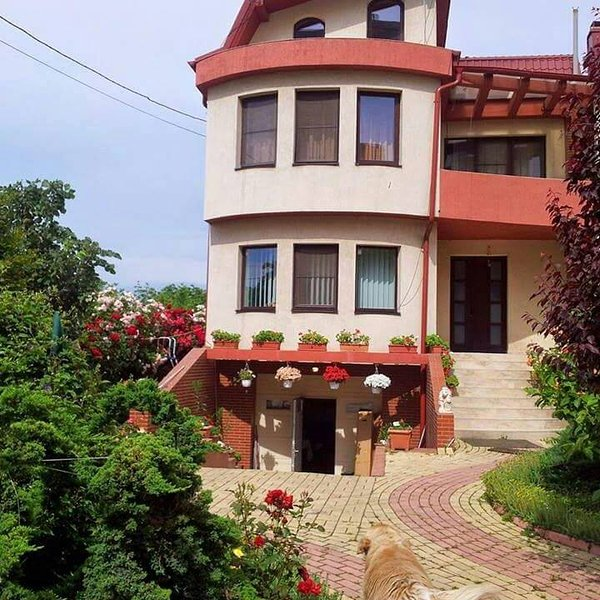 JOHANNA HOUSE-VINTIGE STYLE-APARTAMENT, holiday rental in Jilava