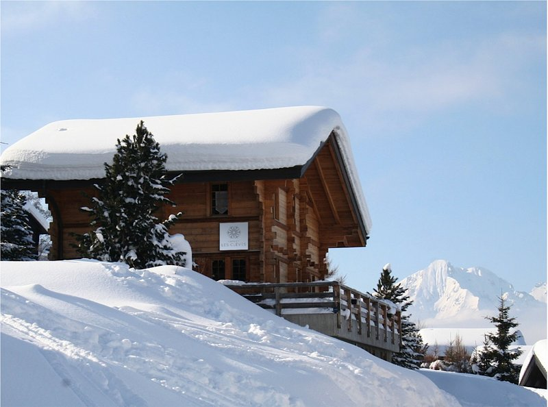 Chalet Les Cleves, luxury ski-in/ski-out rental, holiday rental in Canton of Valais