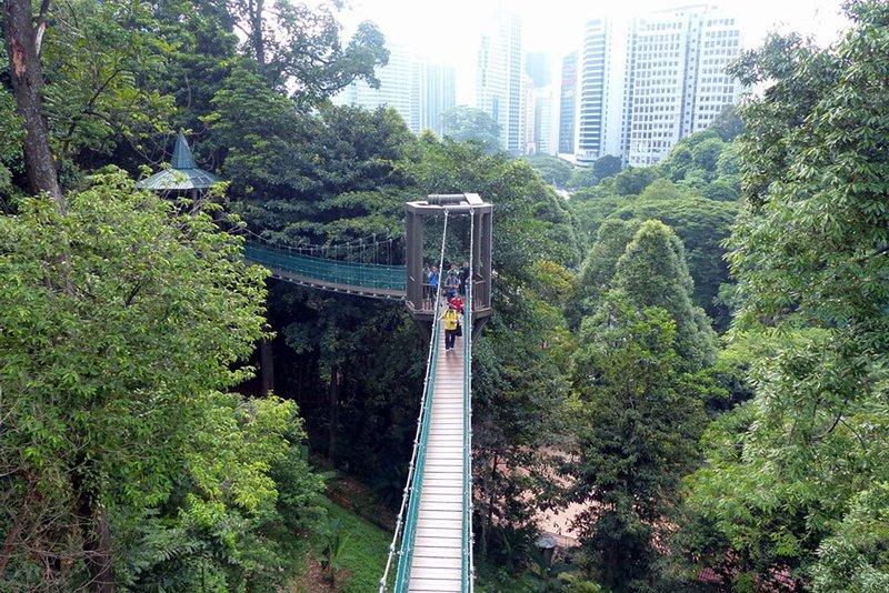 10 minutos a pie de la KL Bosque Eco Park. (5 minutos en coche)