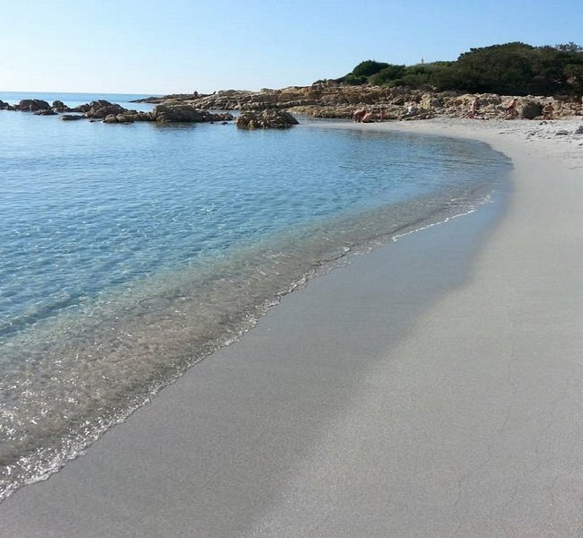 Villa Paradiso, sul mare con giardino mediterraneo, alquiler vacacional en Cala Liberotto