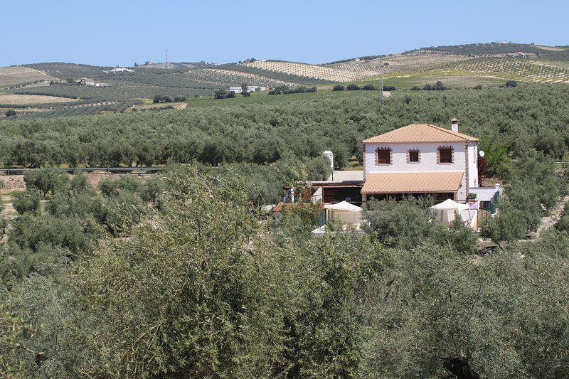 CASA RURAL PÍO, holiday rental in Baena