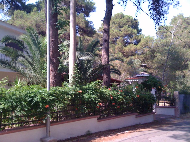 villa anna bv, holiday rental in Castellaneta