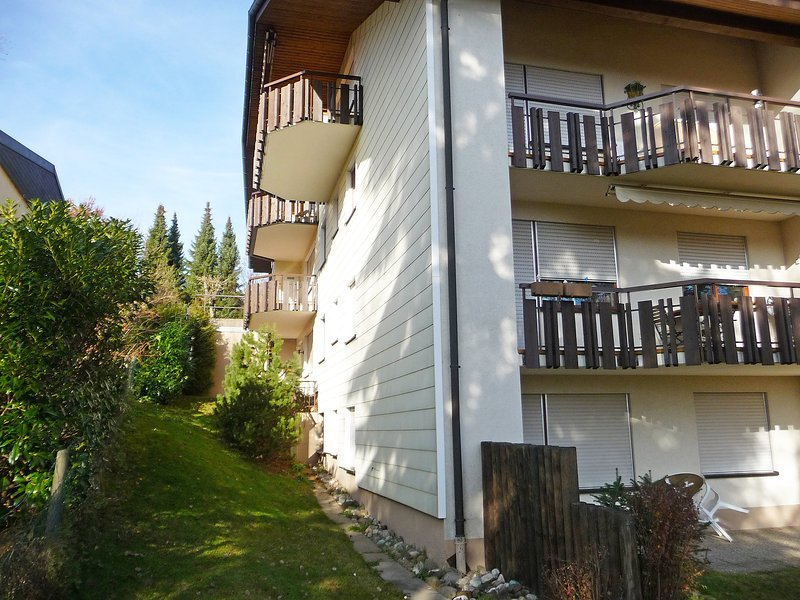 Haus Sonnenmatt, holiday rental in Sankt Blasien
