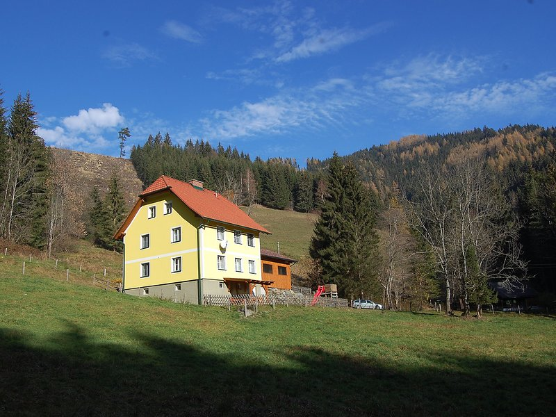 Krechen Alm, holiday rental in Pernegg an der Mur