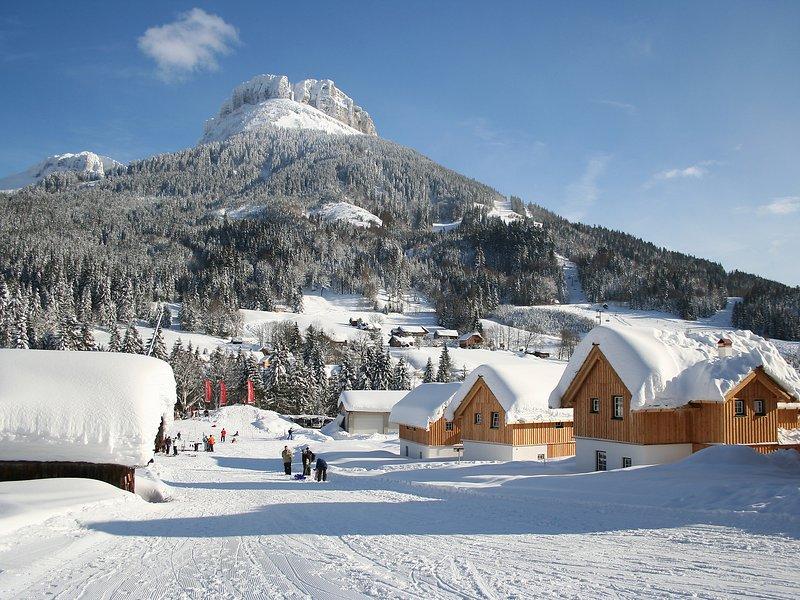 Alpen Parks, vacation rental in Altaussee