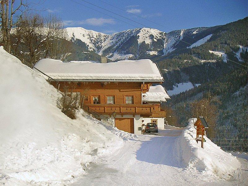 Haus Schneider, holiday rental in Zell am See