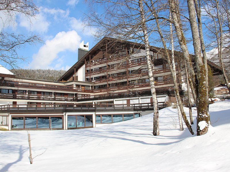 Seefeld accommodation chalets for rent in Seefeld apartments to rent in Seefeld holiday homes to rent in Seefeld