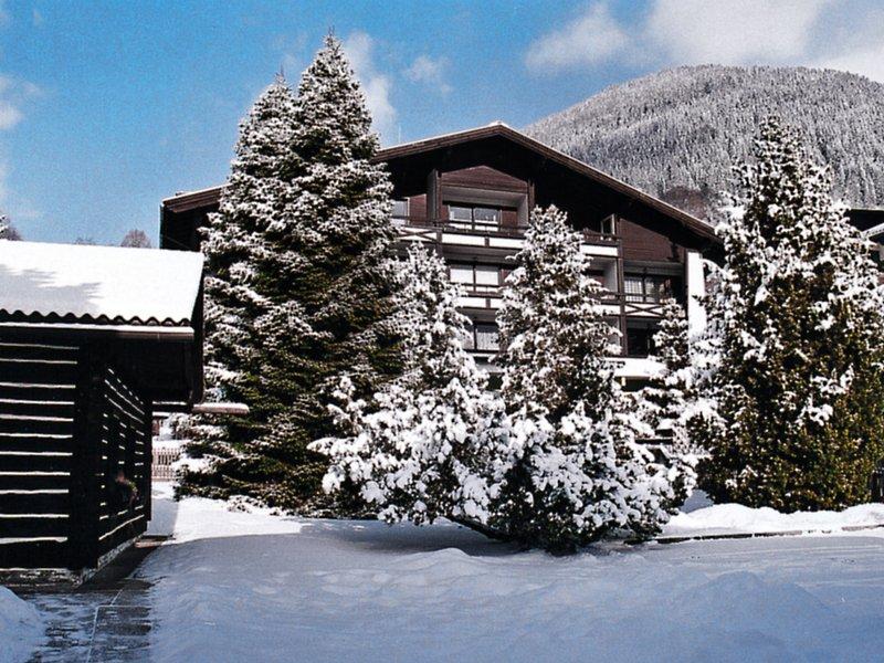 Therme, vacation rental in Bad Kleinkirchheim