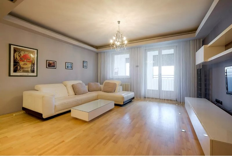 Large cozy and quiet apartment, holiday rental in Pancevo