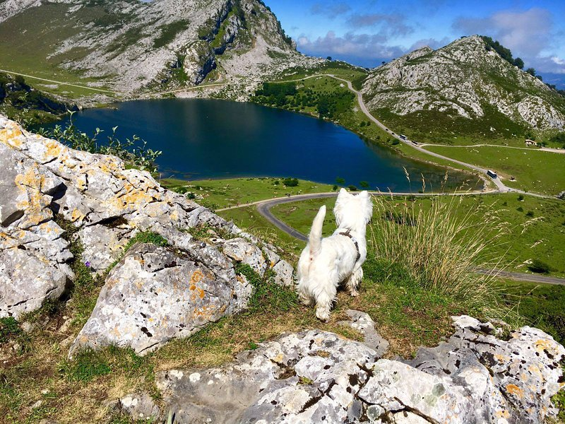 Covadonga Λίμνες