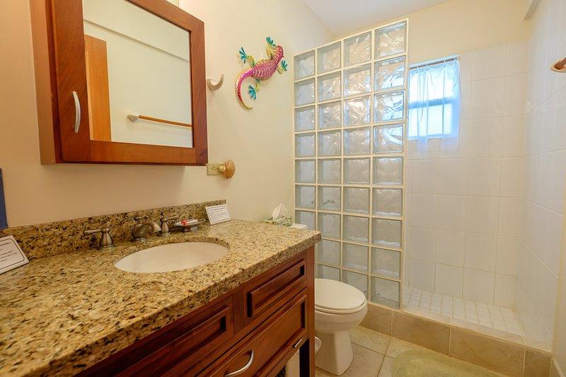 Lower level full bath with glass tiled shower & granite counter