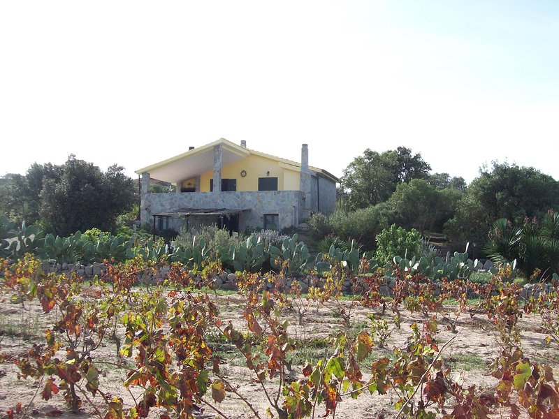 Isola di Sant'Antioco - Casa vacanze - Campagna, holiday rental in Province of Carbonia-Iglesias
