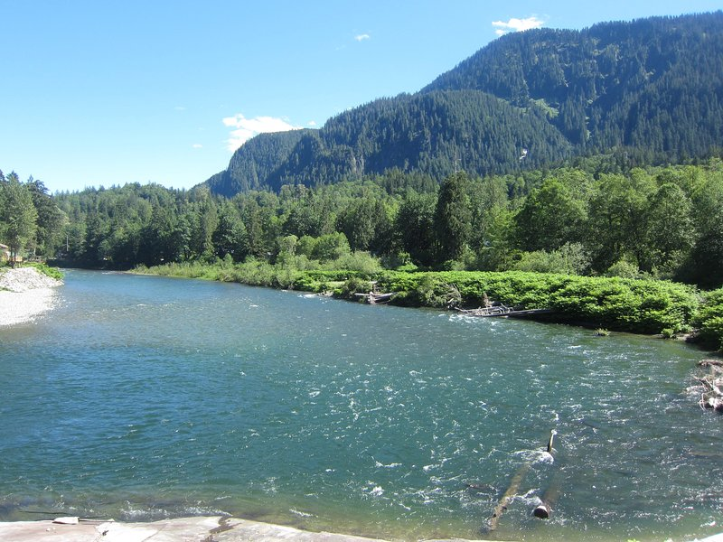 Your riverfront view of the Skykomish River