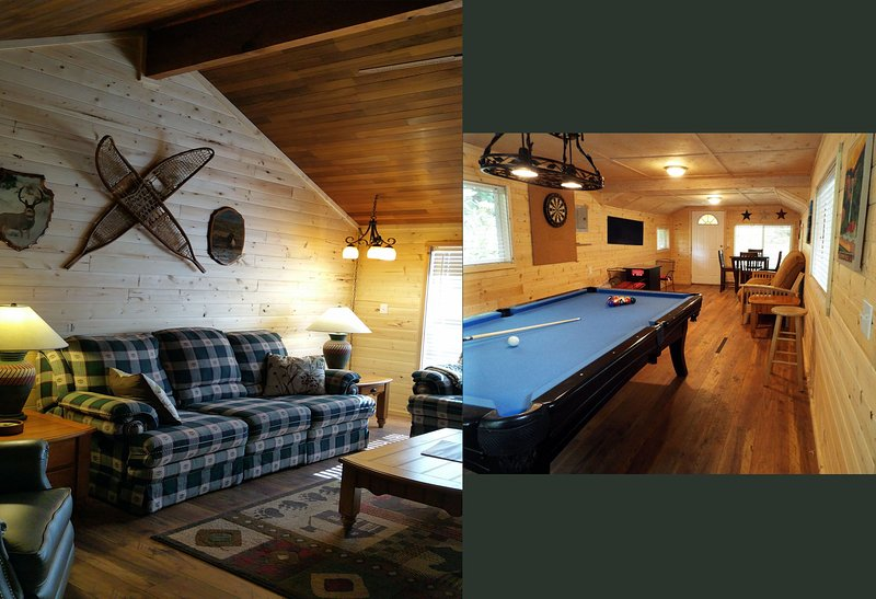 Butter Creek Cottage w/Private Game House, WIFI, A/C, Hot Tub,Hike, Ski, Rainier, holiday rental in Packwood