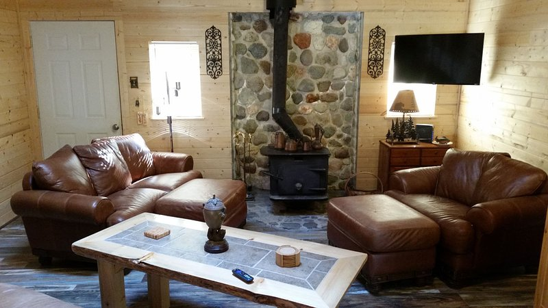Chester's Cabin, Charming, A/C, Hot tub, Wifi, Fish, Hike, Ski & Mt Rainier, holiday rental in Packwood