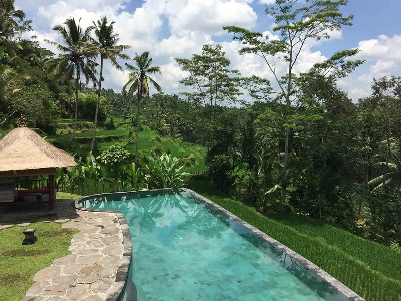 Luxurious and enormous UBUD 7 BDR Villa with stunning view + 2 swimming pool, holiday rental in Bresela