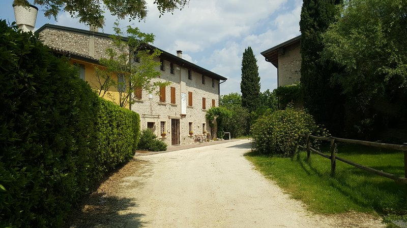 Amazing Historical Country House - in the vineyards, with private garden and bbq, holiday rental in Pozzolengo