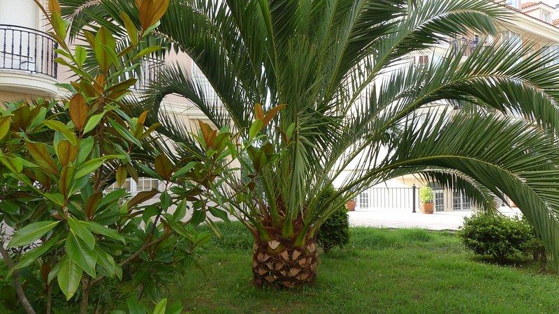 Attico e superattico completamente rinnovato, holiday rental in Treceno