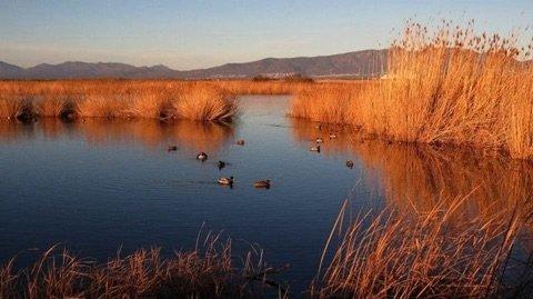 Natuurlijke parc in Torroella de Montgri