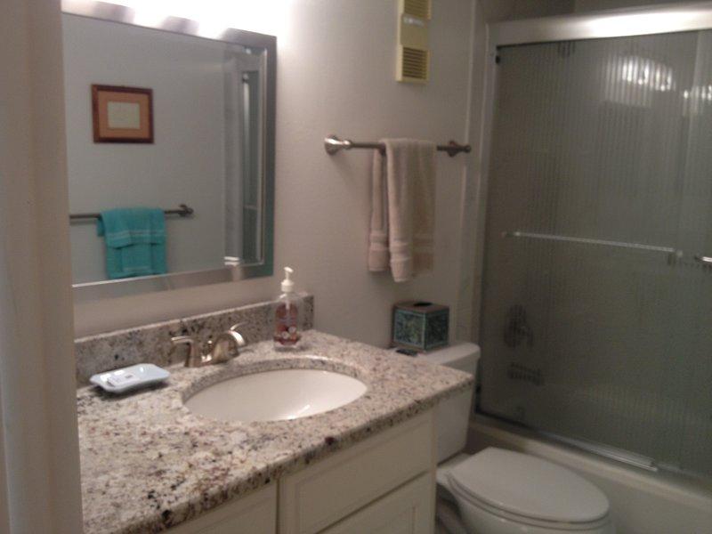 Nuevo baño de visitas con encimeras de granito y mueble de madera de arce.