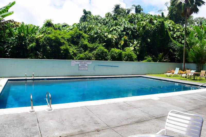 Il y a aussi une piscine avec beaucoup de chaises longues pour les bains de soleil.