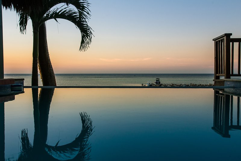 Infinity Pool with swim-up bar