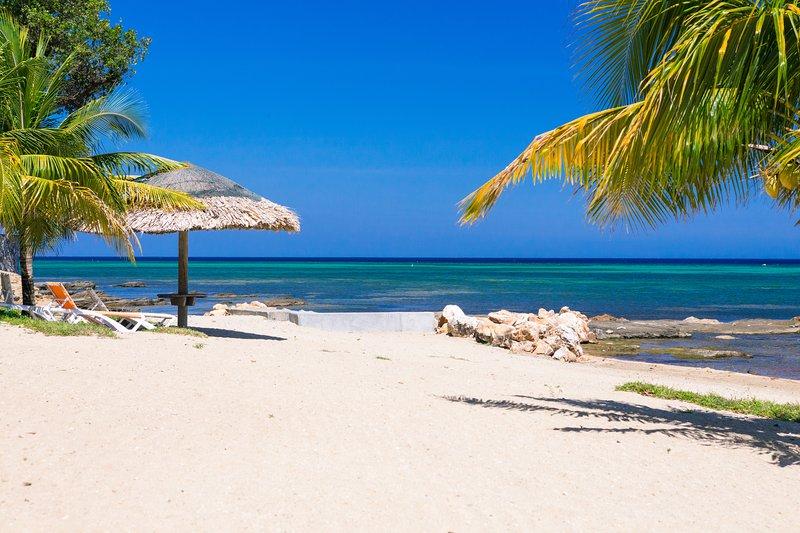 Enjoy the palm trees or our tiki palapa area